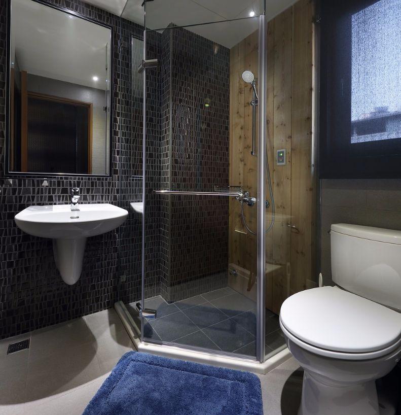 Douche, wc, spiegel en wastafel