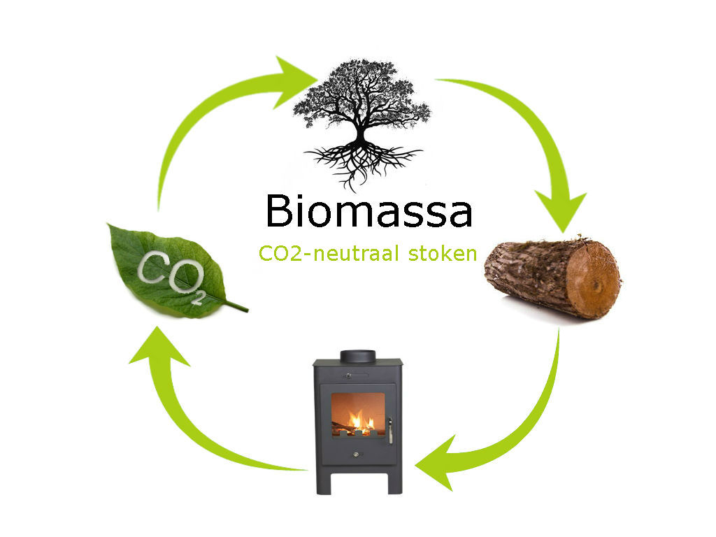 Biomassa Cyclus