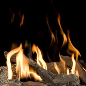 Bellfires Unica houtstammenset
